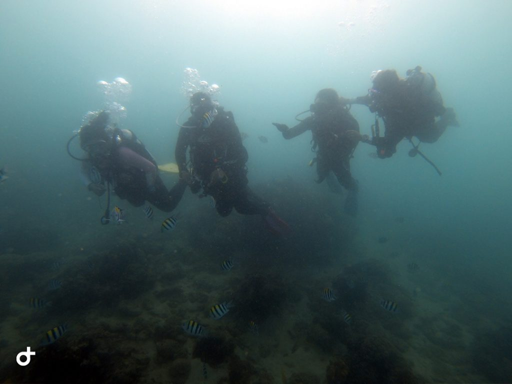 Scuba Diving at Kenting with Experienced Instructors